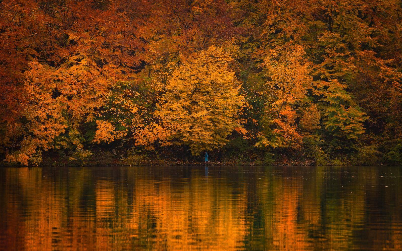 Zavalite se i uživajte: Čarobna jesen na Plitvičkim jezerima