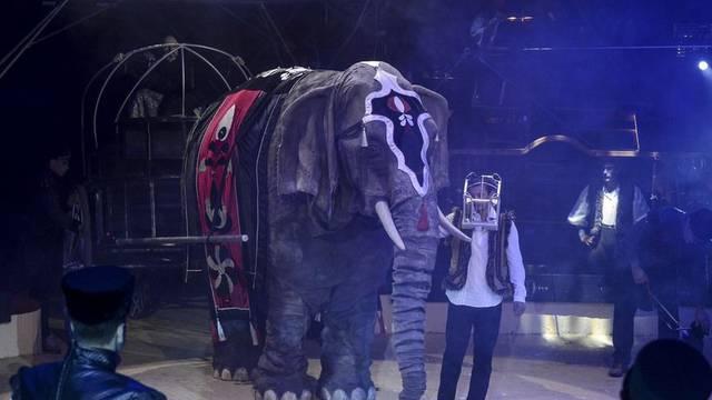 Cirkusi u karanteni: Životinje leže beživotno u nastambama