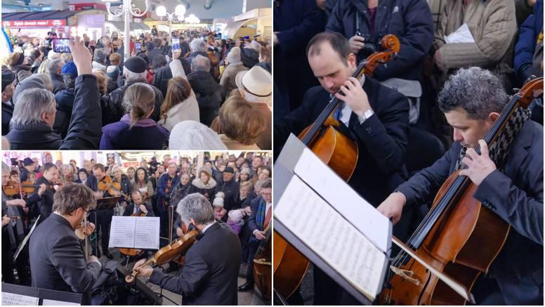 Zagrebački solisti zabavljali su građane na zagrebačkoj tržnici