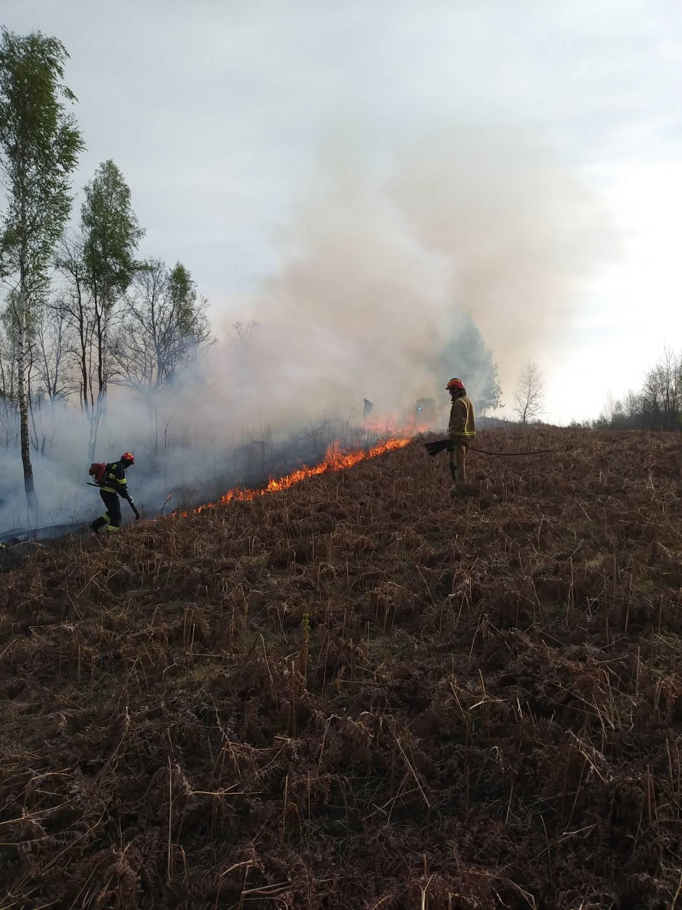 Vatrogasci ljuti: 'Tko normalan još podmeće požar na Uskrs?!'