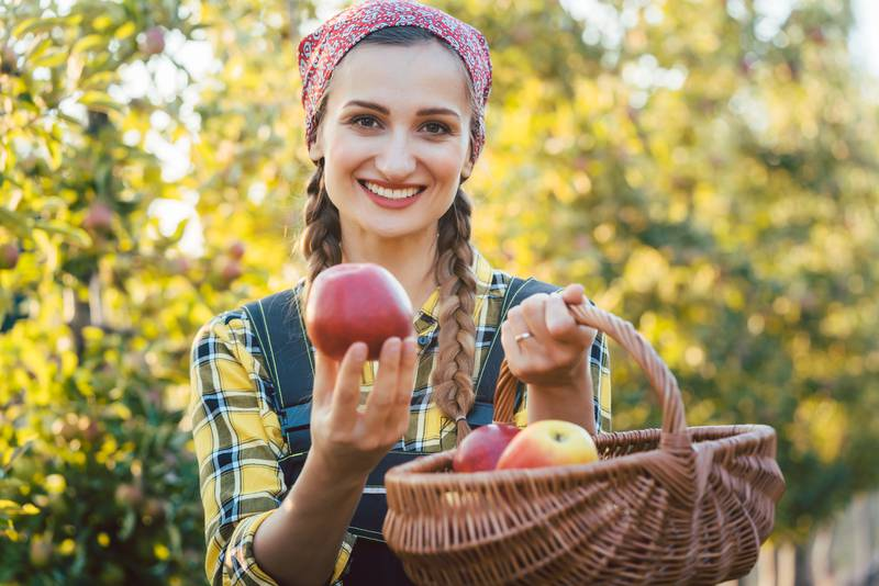 Prvi javni voćnjak u Varaždinu: Besplatno voće za sve građane