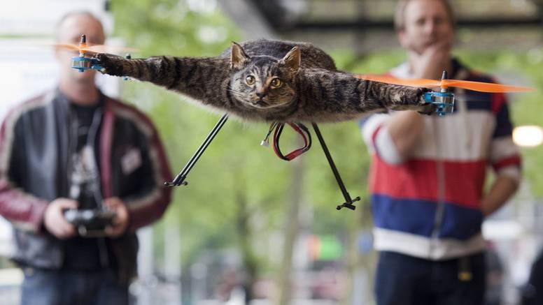 Preparirao je svojeg mačka pa od njega napravio - helikopter