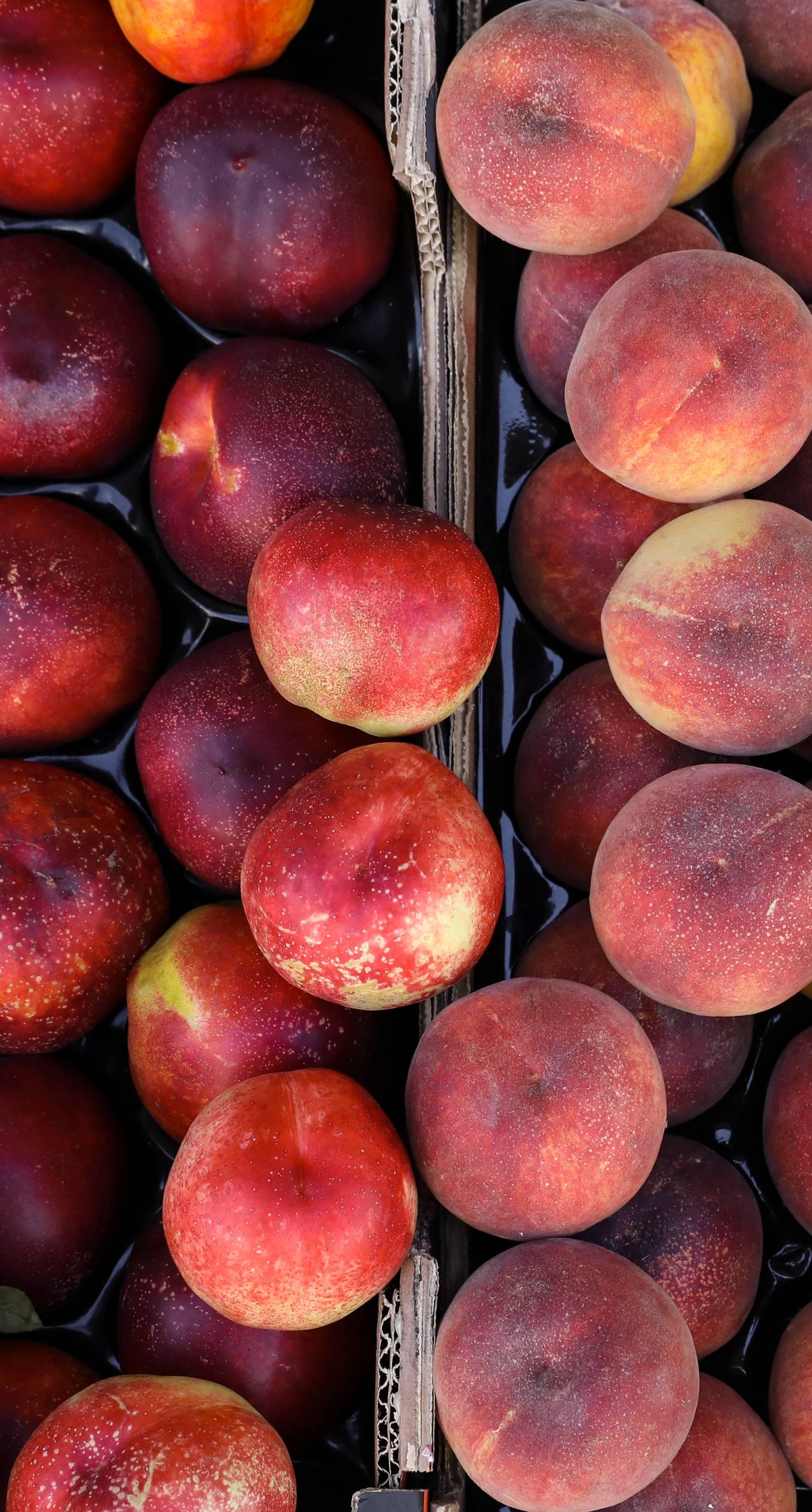 Zabavna hrana: Nektarina i breskva su u osnovi isto voće