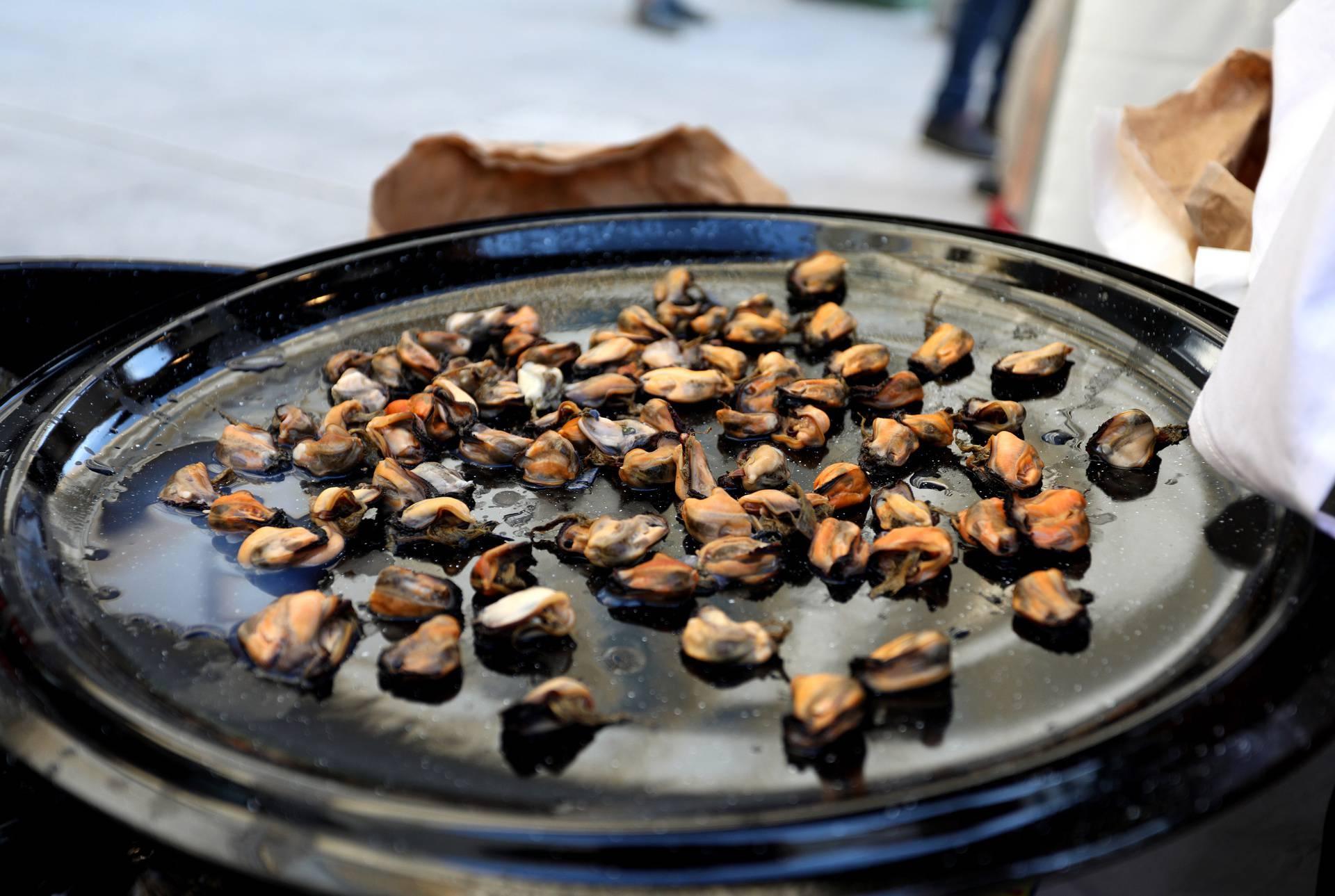 Napokon gušti: Promocija šibenskih pidoča i autohtonog debija privukla velik broj ljudi