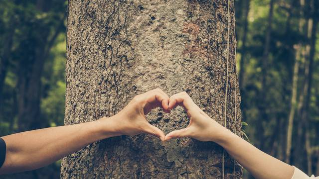 Osam vrsta ljubavi: Kako znati koju osjećate prema nekome?