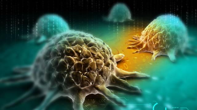 Predstavljen putokaz koji može ranije dijagnosticirati rak krvi