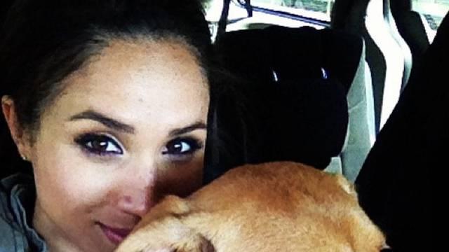 Meghan i Harry posvojili bivšeg psa za spašavanje: Zove se Oz