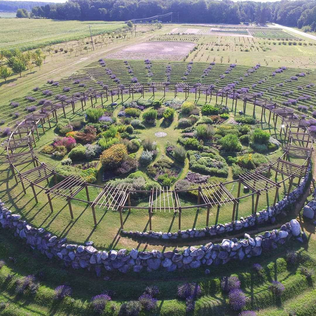 Šetnja kroz 'Labirint lavande' je čarobno putovanje kroz mirise