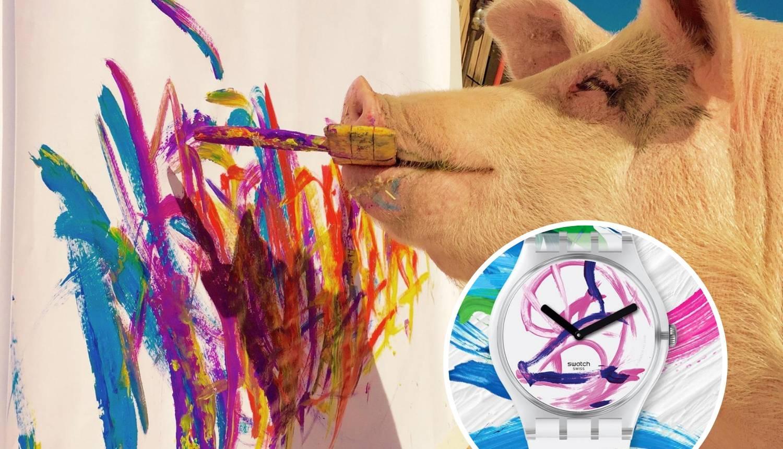 Swatch ponudio svinji Pigcasso suradnju - ukrašava im satove