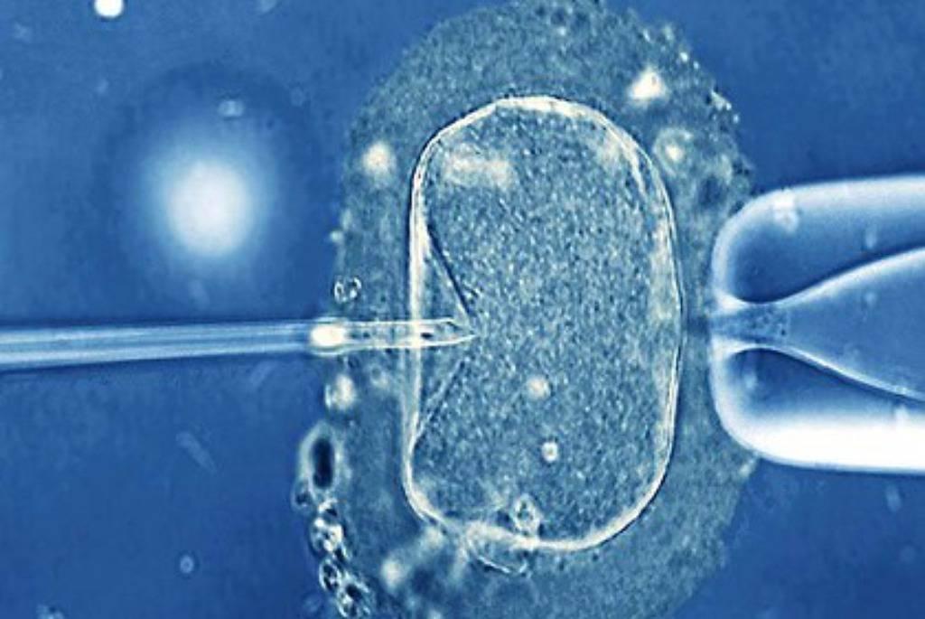 Britanci će dopustiti umjetnu oplodnju od DNK triju osoba