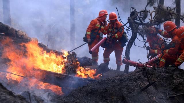 Gori šuma u blizini Černobila: Radijacija otežava gašenje...