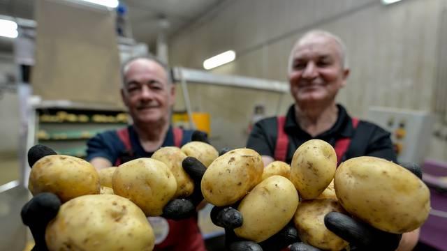 Ova međimurska tvrtka oduševit će vas svojom pričom o uspjehu, a saznat ćete i kako nastaje krumpir koji svakodnevno jedemo