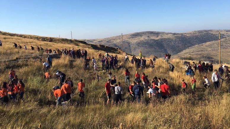 Boranka: Posadili 8000 novih sadnica u šumi iznad Kožina