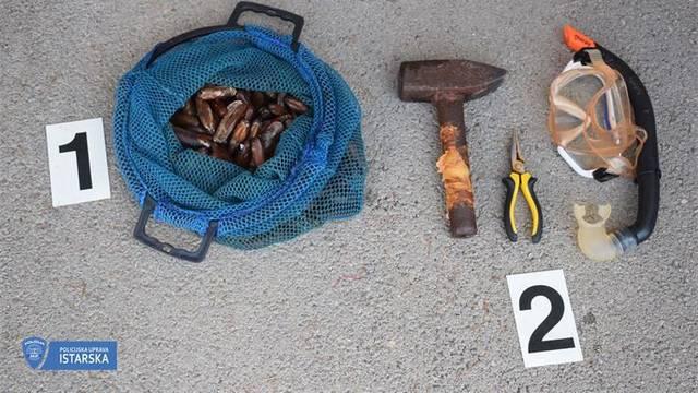 Izlov zaštićenih školjki: Izvadio punu vreću prstaca, ali ga je policija  dočekala na obali...