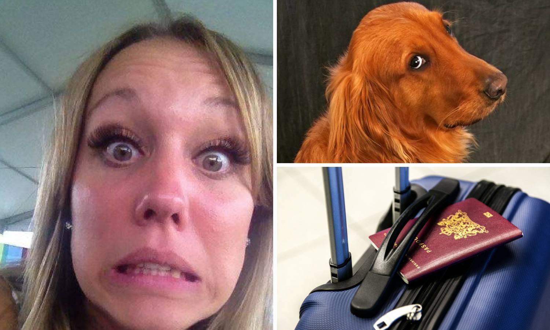 Otkazali putovanje: Pas našao  dječje putovnice i  - sažvakao ih