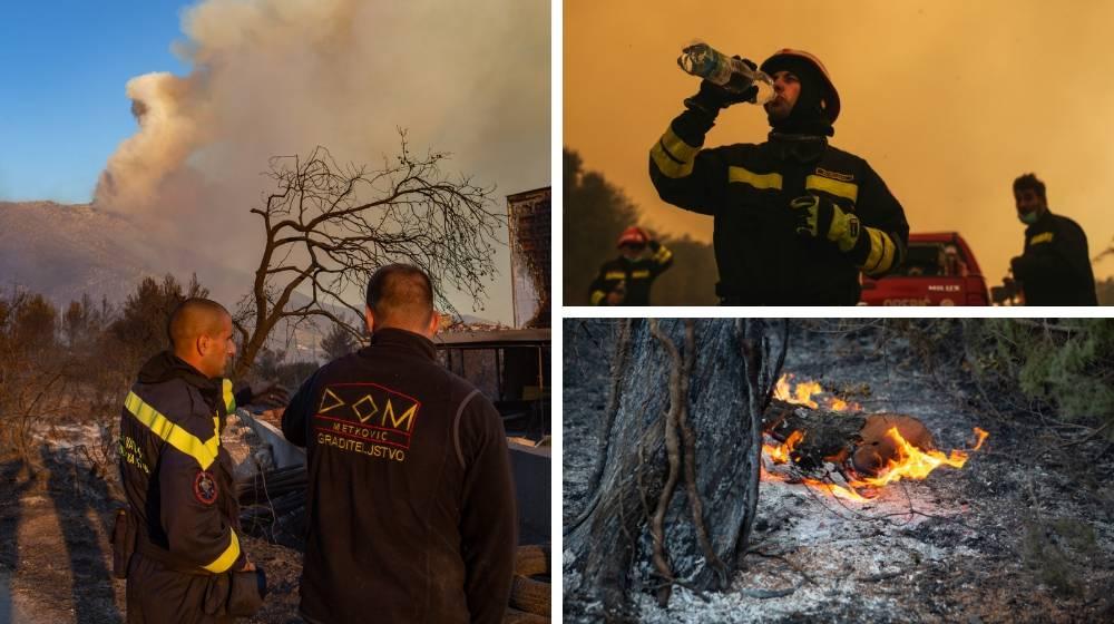Pelješac još gori: Linija obrane od požara duga je tri kilometra