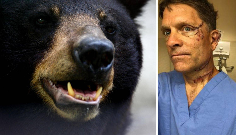 Medvjed mu je upao u kuhinju: 'Udario me u glavu i vrat, krv je bila svugdje, skoro me ubio'