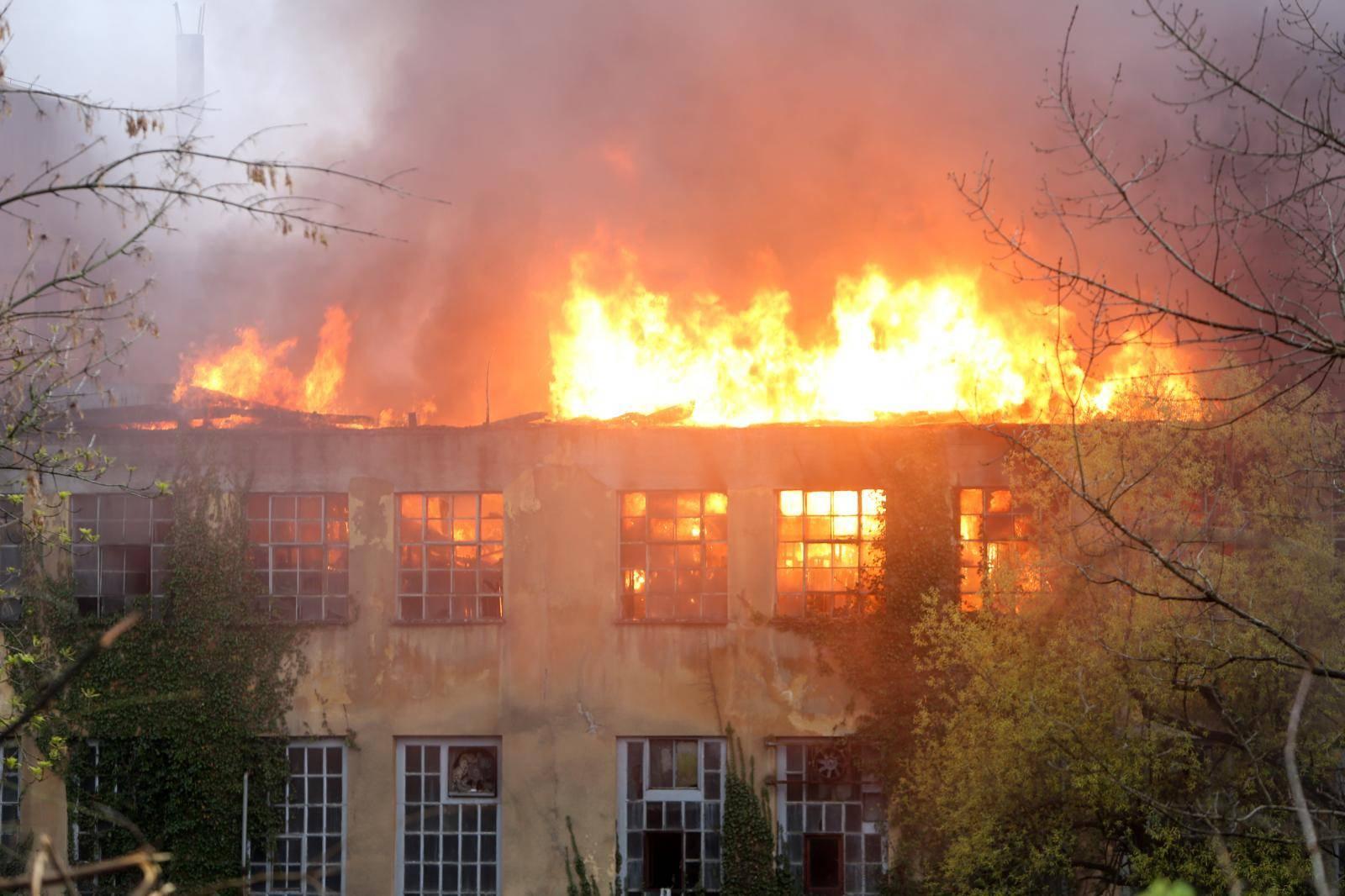 Gori 'Pamučna': Vatra je pod nadzorom, nema više opasnosti