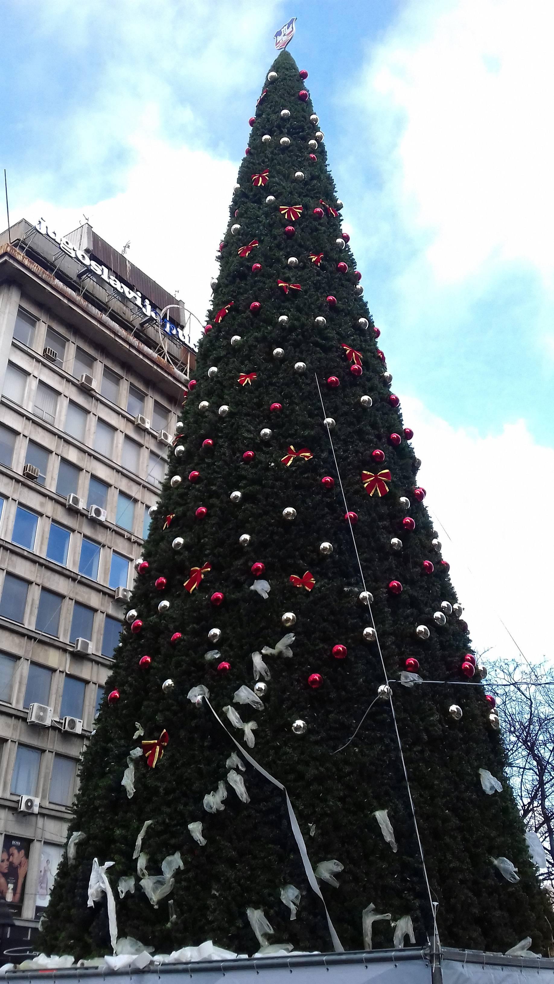 Afera s preskupim božiænim drvcem trese upravu Beograda