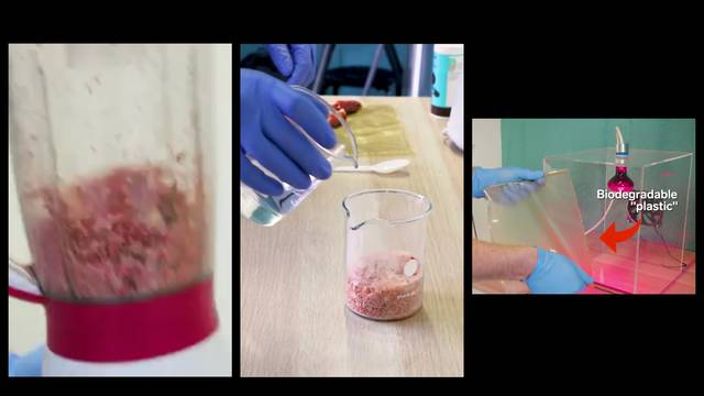 Tim studenata od ljuski jastoga napravio biorazgradivu plastiku