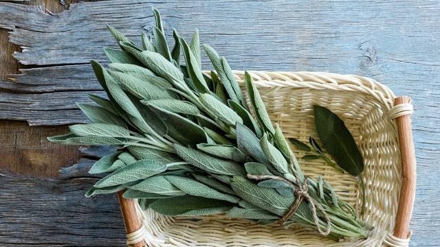 Od aromatične kadulje lako je pripremiti domaći sirup ili čaj