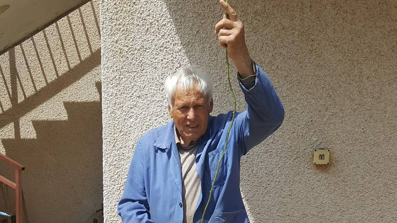 Kapitalac u Istri: Kraj Savudrije ubrao šparogu od 2,35 metara!