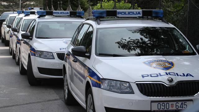 policijska