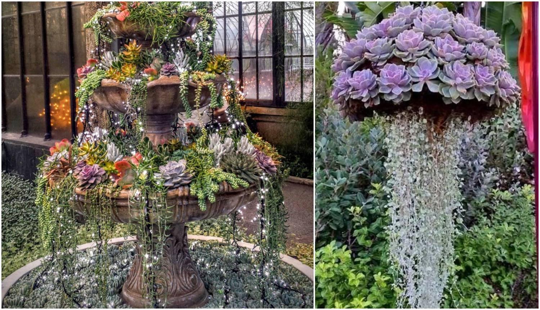 Za vrt kao iz bajke: Napravite svoju viseću 'biljku meduzu'