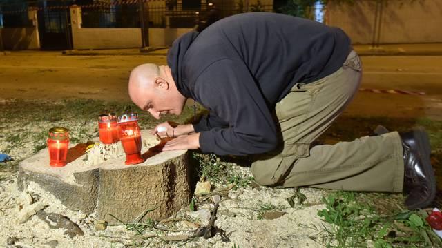 'Farsa je da se u Zadru sijeku stabla da bi se smanjile gužve'
