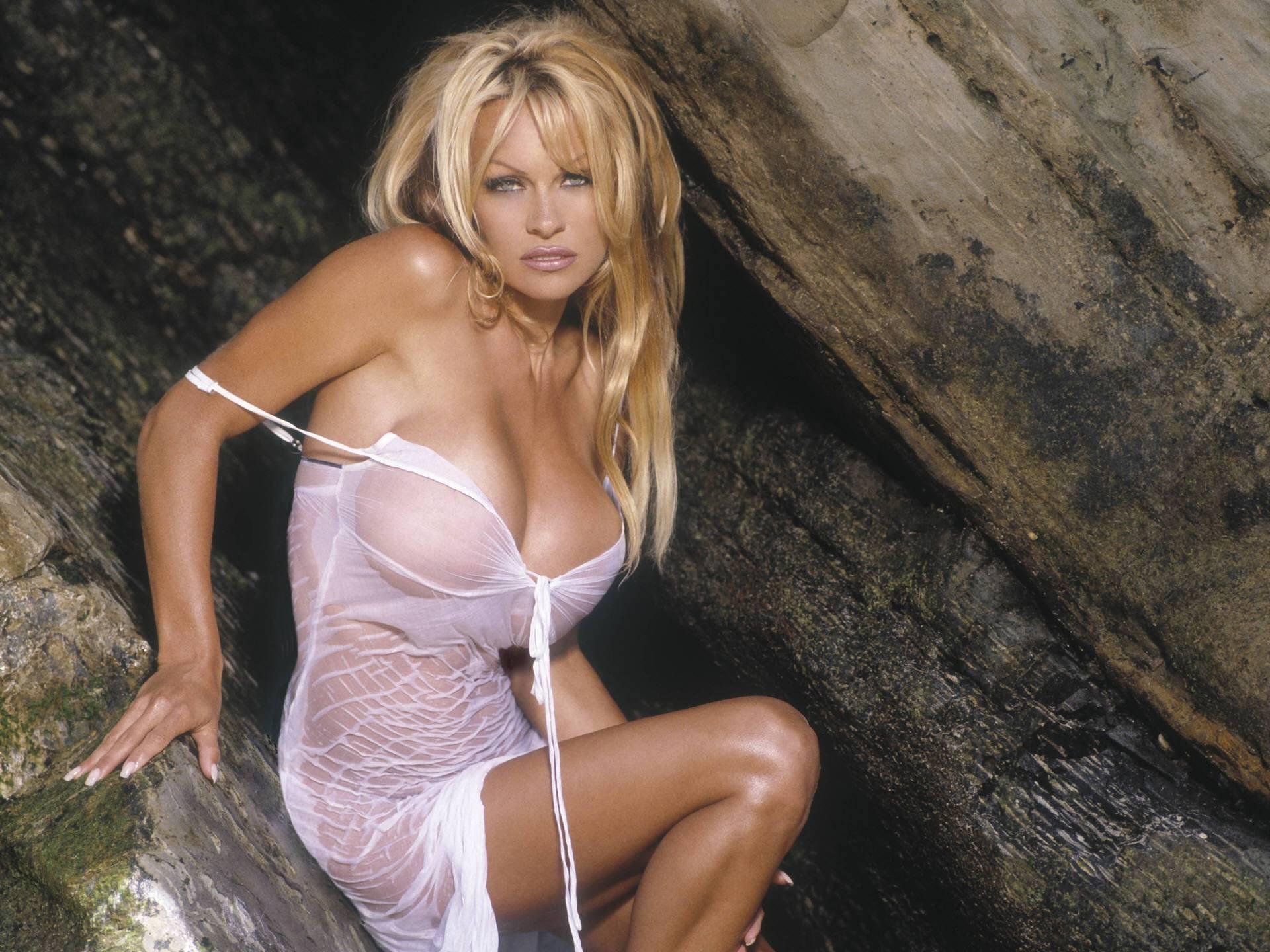 Pamela Anderson želi preseliti u Europu, tu su joj svi frendovi