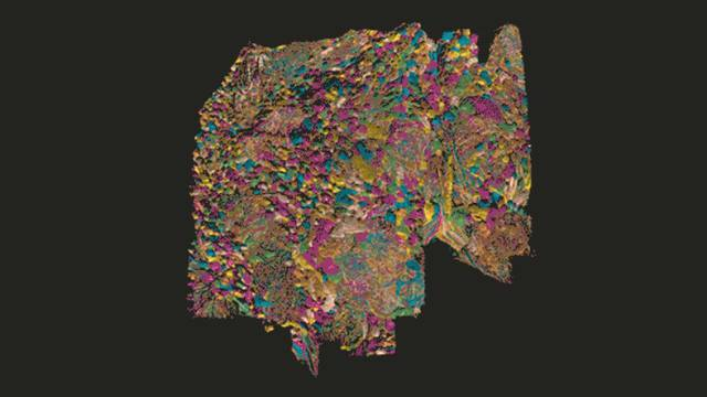 Fascinantno: Pogledajte dosad najkompleksniju mapu mozga
