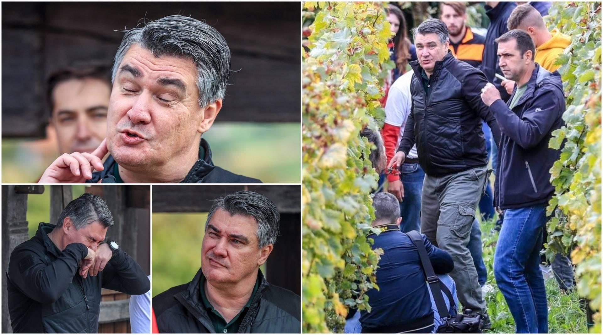 Zoki u vinogradu: Uvijek radije bira kapljicu vina nego cigaretu