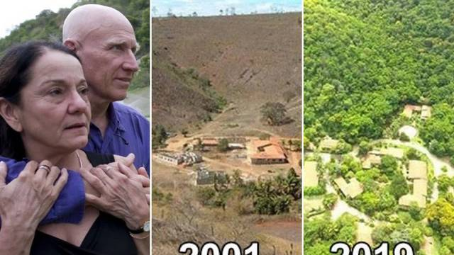 Svaka čast: Zasadili 4 milijuna mladica i stvorili novu šumu
