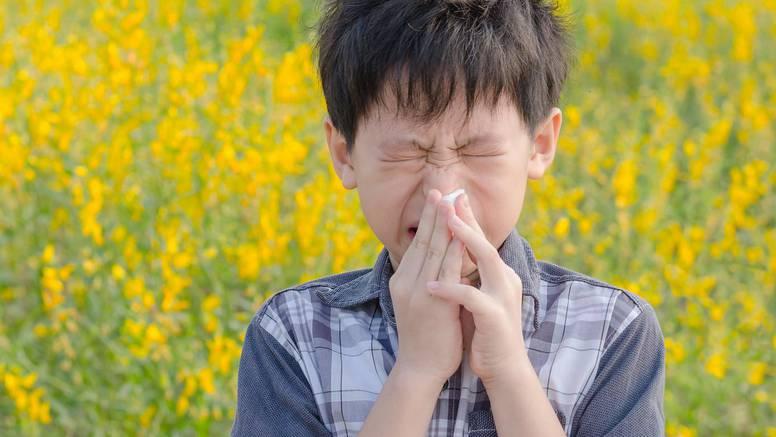 Pobrinite se da vaše dijete zna okidače alergije i kako ih izbjeći