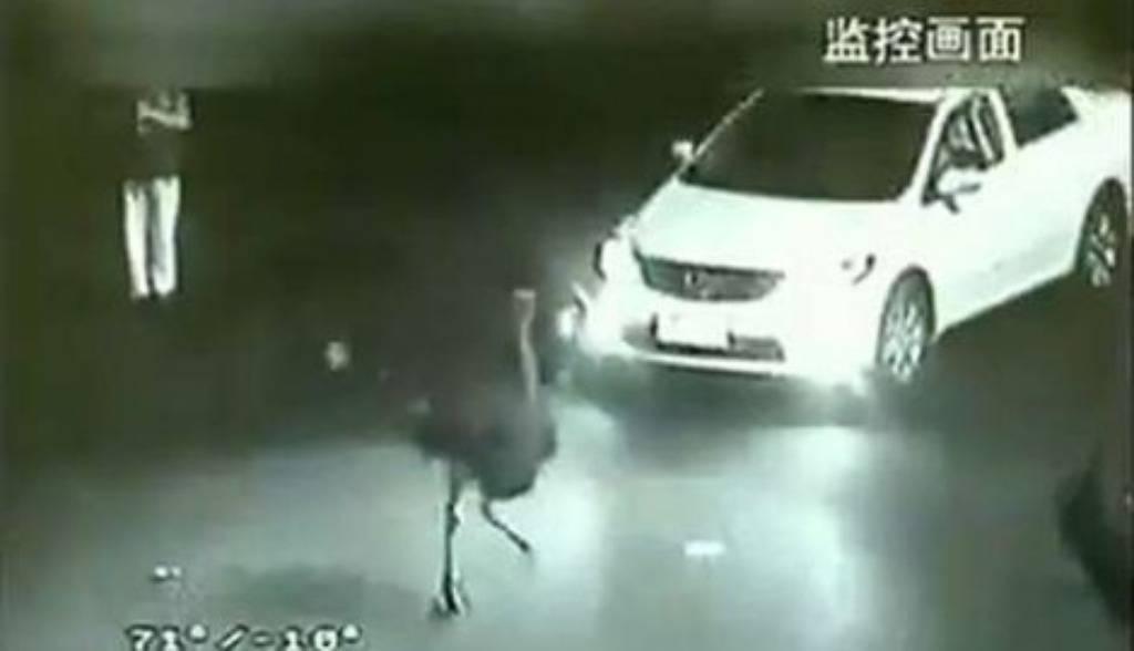 Noj četiri sata bježao policiji i napravio pomutnju u prometu