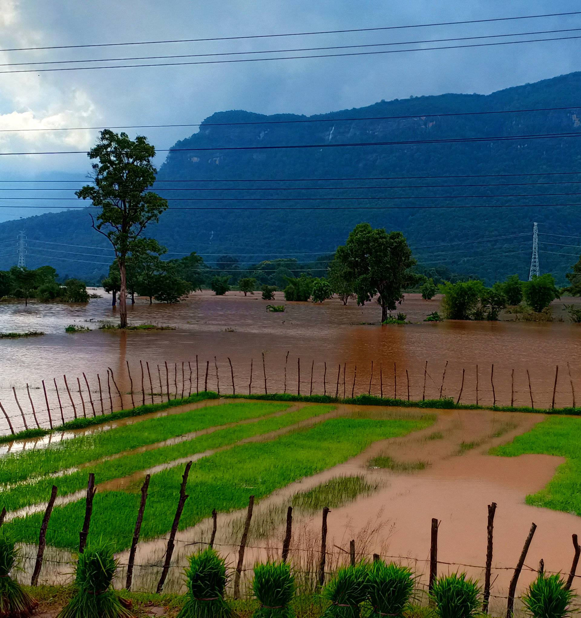 Flooded fields are seen after the Xepian-Xe Nam Noy hydropower dam collapsed in Attapeu province