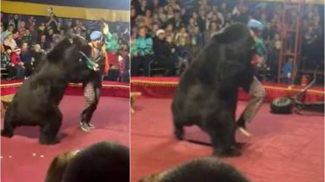 Uznemirujući video: Medvjed iz cirkusa napao je svog trenera