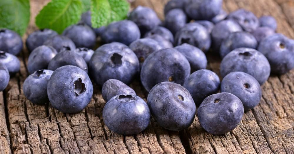 Šaka zdravlja: 9 razloga zašto treba jesti borovnice svaki dan | 24sata