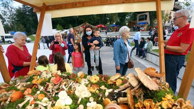 Duga Resa: U Amfiteatru održana tradicionalna gljivarska večer