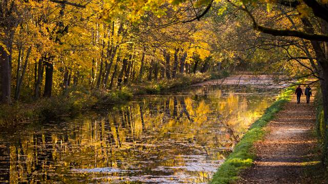 Autumn on the Ludwig Canal