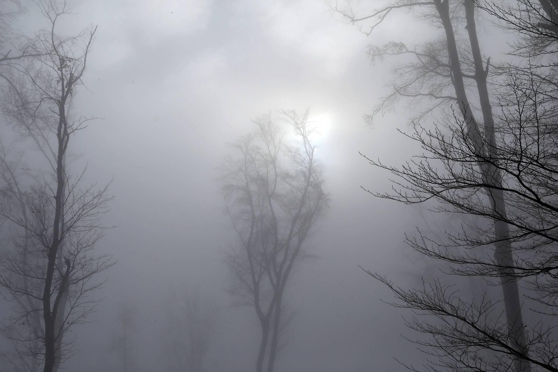 Jesensko i maglovito jutro na Sljemenu probudilo Zagrepčane