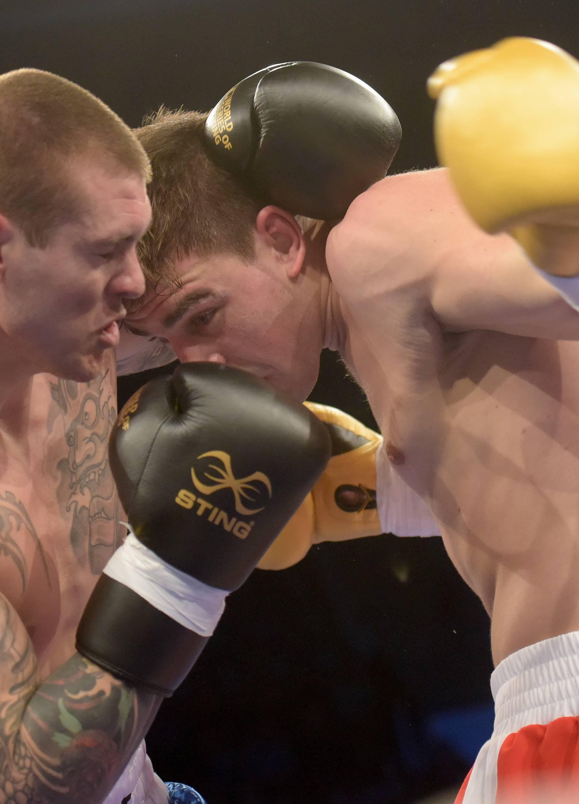Vitezovi iz Hrvatske u boksu dočekuje 'lavove' iz Britanije