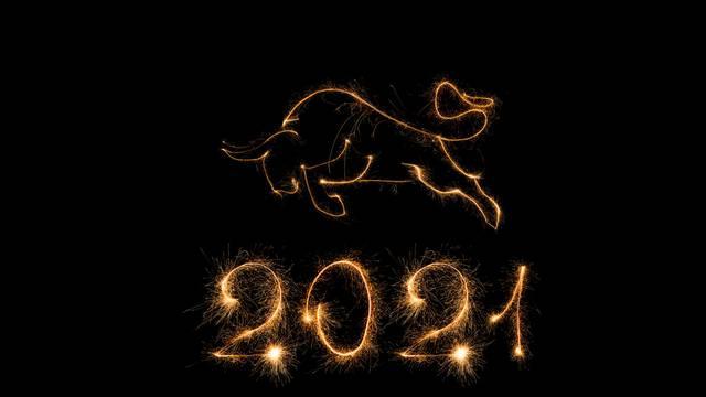 Kineska godina Bivola: Evo što čeka koji znak u 2021. godini