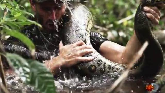 Discovery Channel/YouTube
