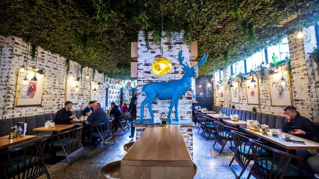 Split: Zoran Covic voditelj puba Cool Garden