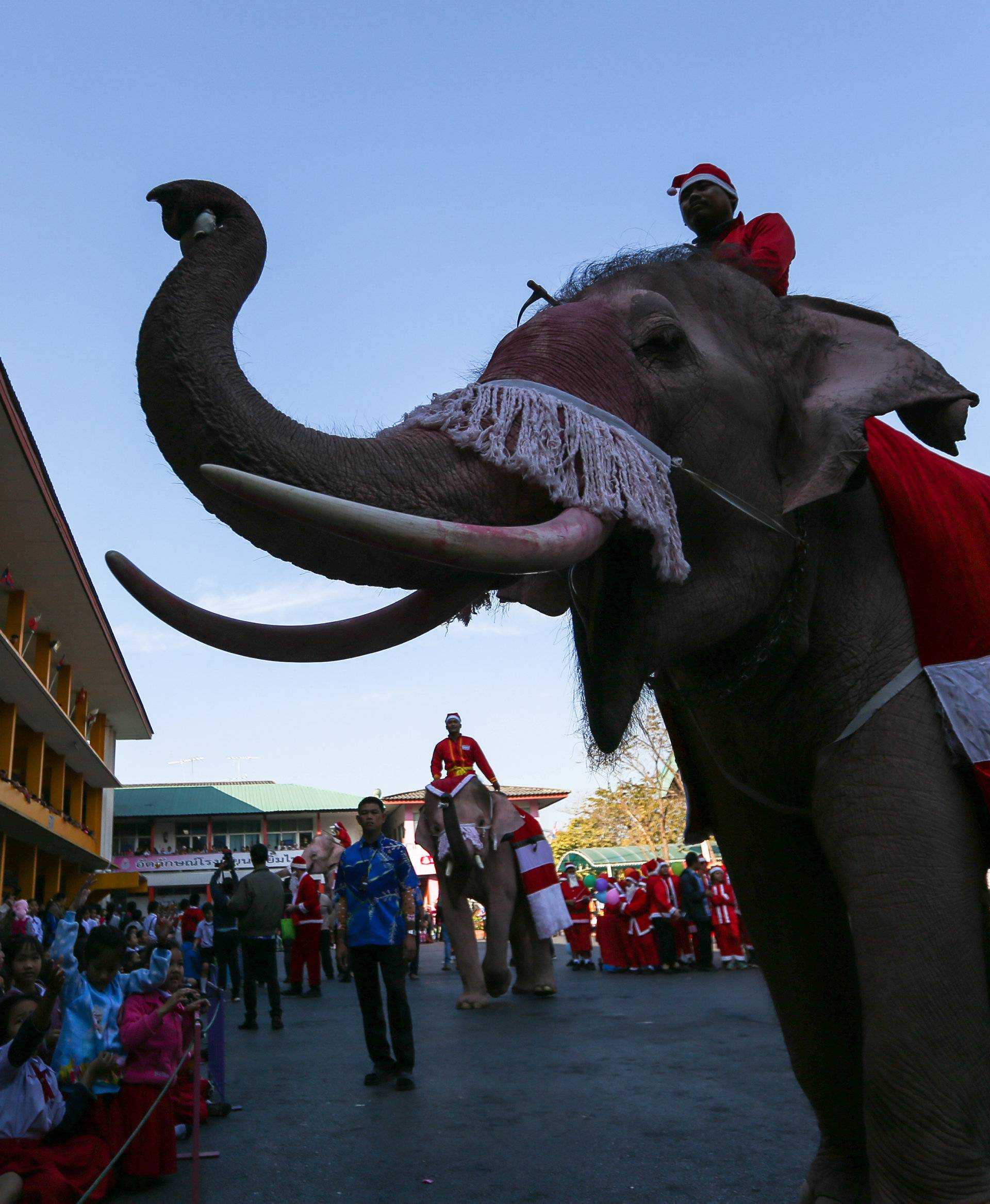 Elephants dressed in Santa Claus costumes distribute gifts to students during Christmas celebrations at Jirasart school in Ayutthaya