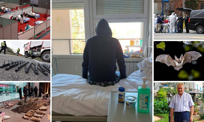 Sto dana korone: Od tržnice u Kini do smrti u Brtonigli u Istri
