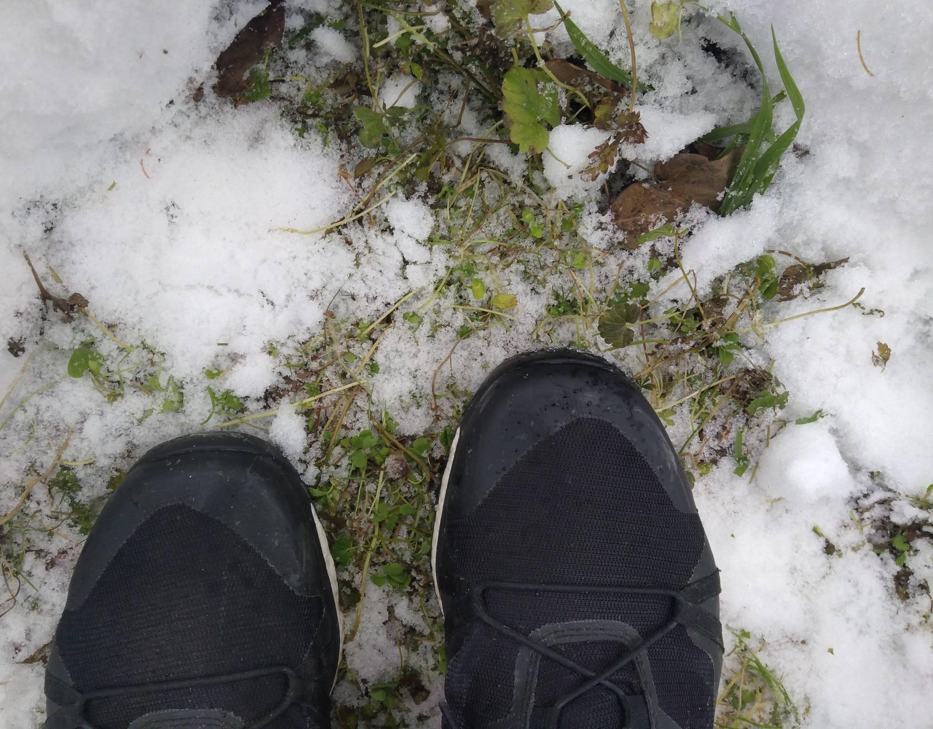 Proljeće (ni)je, a u meni nemir: Stižu sve bolji dani za trčanje