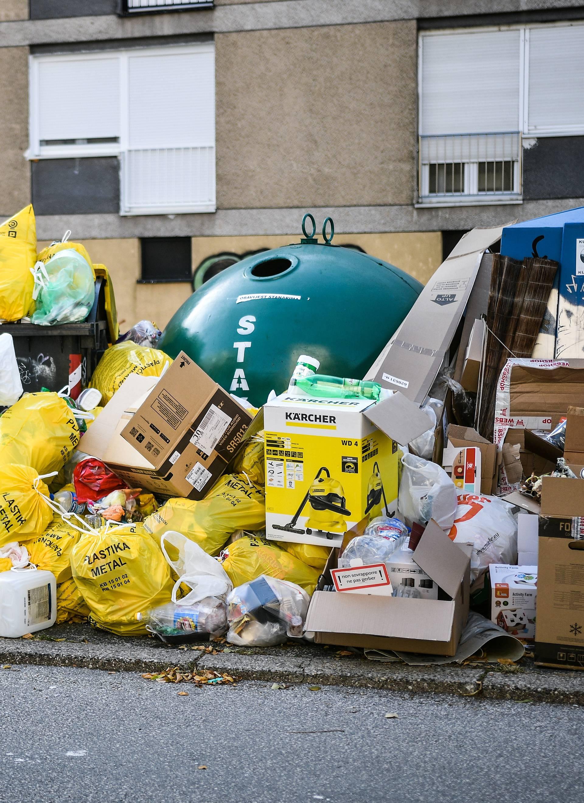 Smrdi, smrdi, užasno smrdi: U kontejnerima više nema mjesta