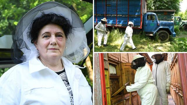 'Pčele su moj život, a skoro su me ubile - imala sam više stotina uboda po cijelom tijelu'